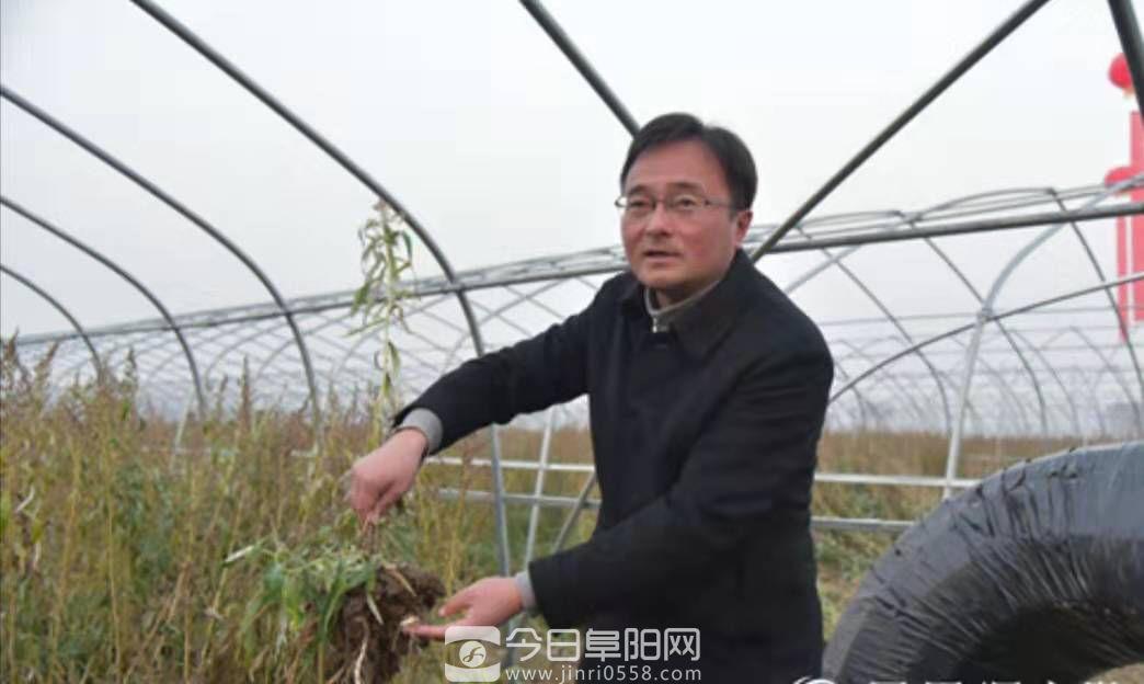 """""""俺为家乡特色农产品来代言""""(新春记者走基层)"""