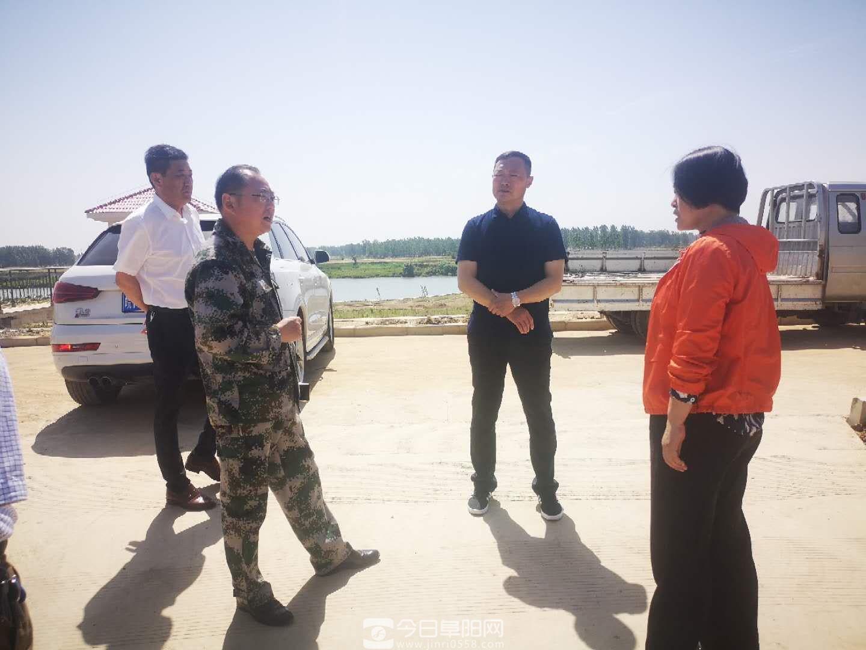 岳蕾率队到王家坝检查指导汛前准备工作
