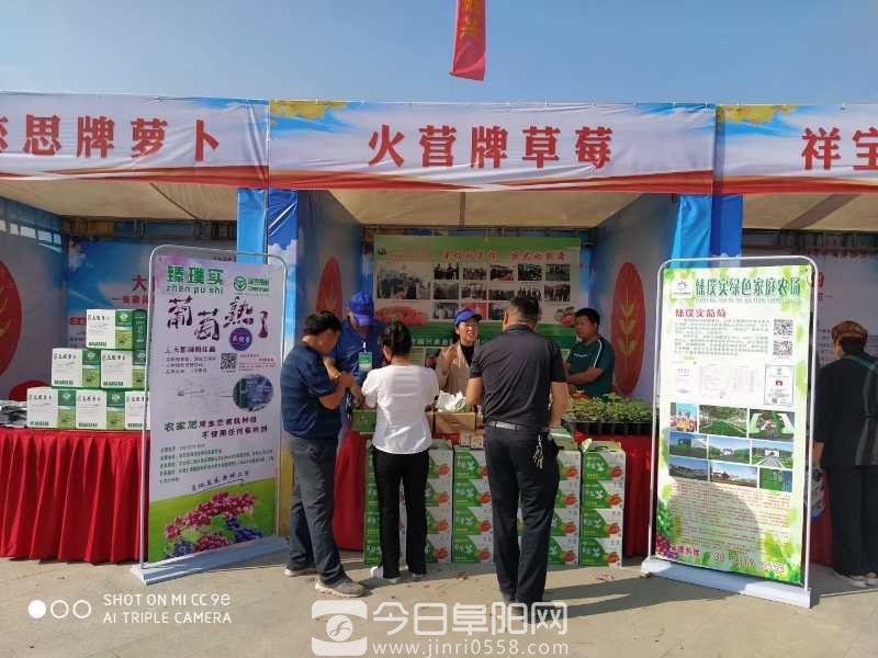 """2020年""""中国农民丰收节""""阜阳市庆祝活动举行"""